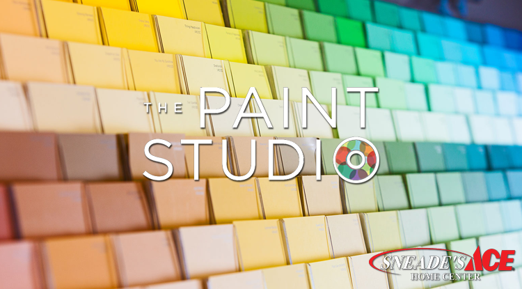 paint studio featured