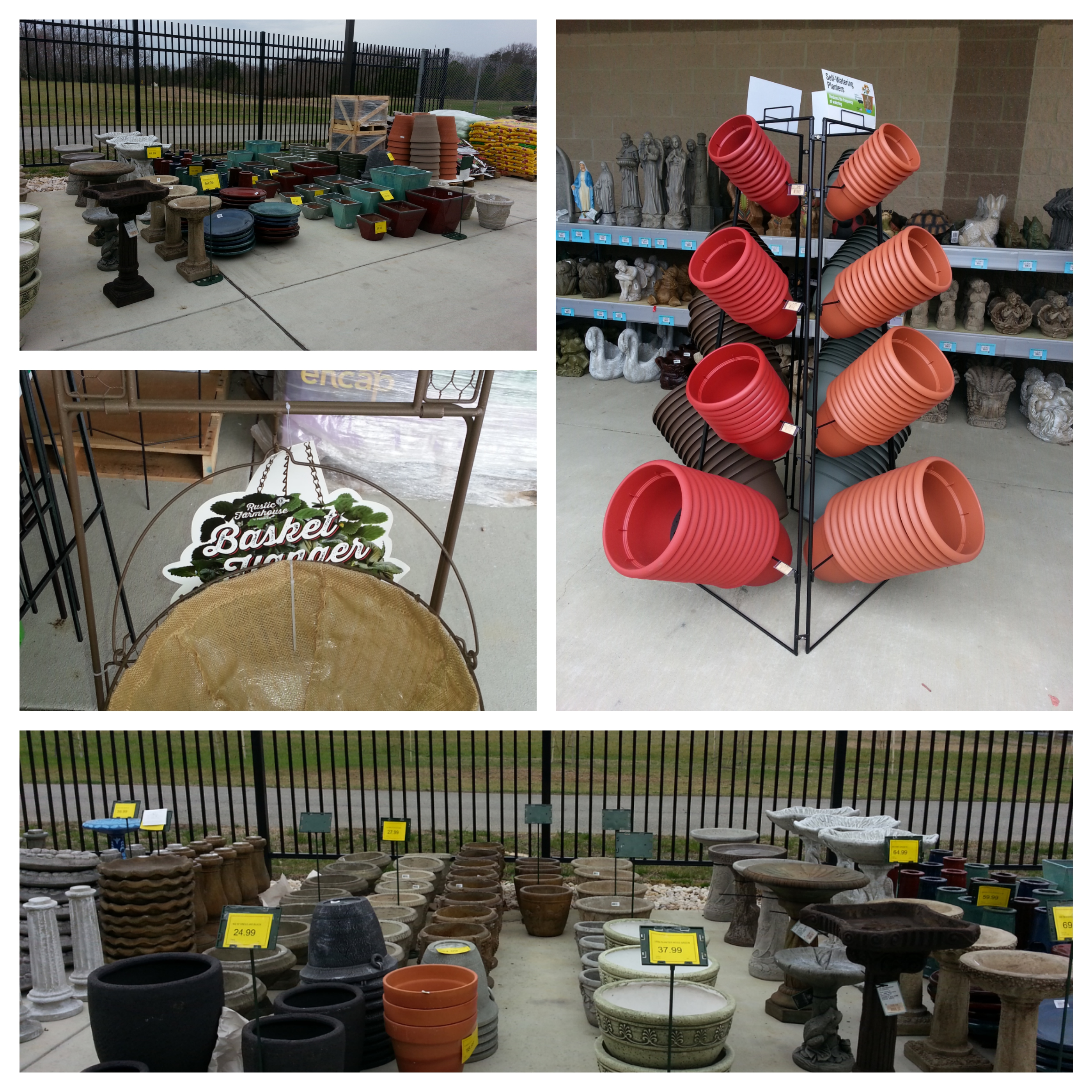 Sneades Garden Center at Lusby Maryland Has What You Need