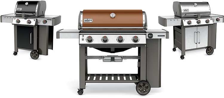 weber-gen-2-selection