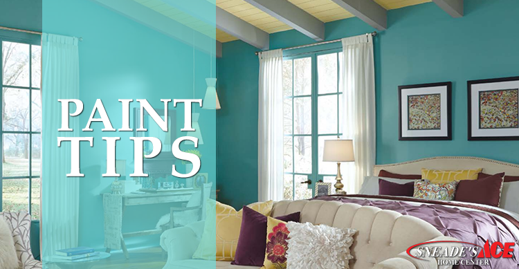 Sneades Paint Tips Featured