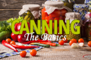 canning the basics featured