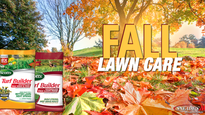 Fall Lawn Care Featured