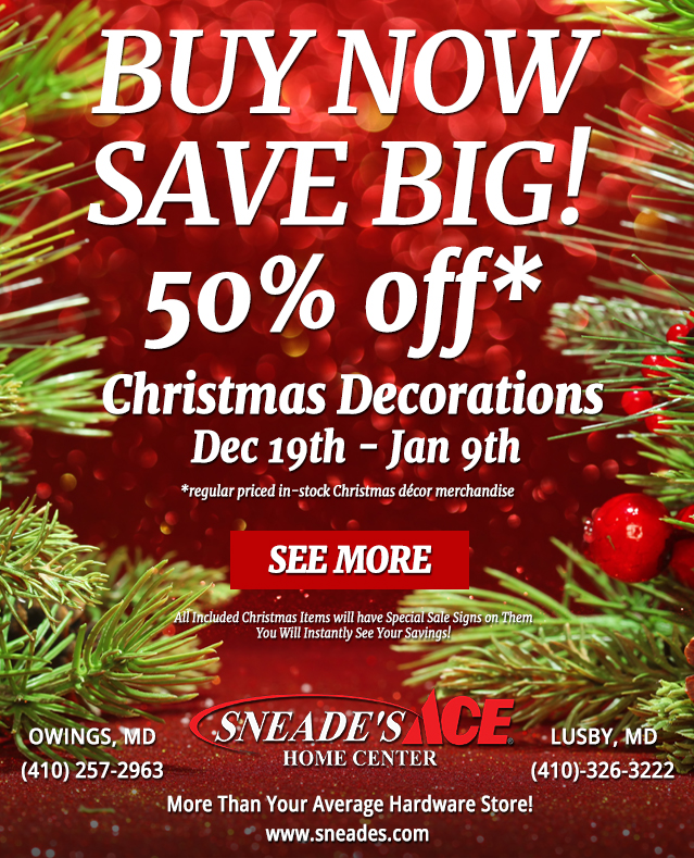 50 Off Holiday Ornament Sale Email Buy Now Save Big