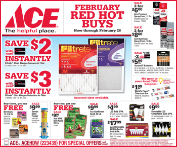 february 2018 red hot buys circular featured sneade 39 s ace home centers. Black Bedroom Furniture Sets. Home Design Ideas