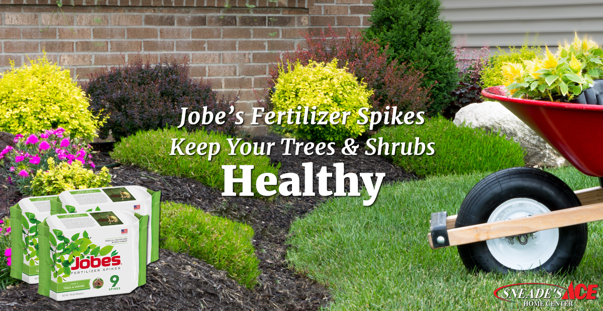 Keep Your Trees Amp Shrubs Healthy Sneade S Ace Home Centers